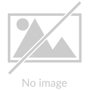 دانلود آهنگ جدید حامد شمس بهمراهی ماهان حسینی بنام پیشم بمون
